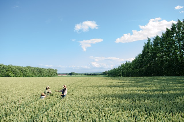 緊急事態宣言による6/19,20日開催の「青い小麦のピクニック」中止とオンライン配信のお知らせ