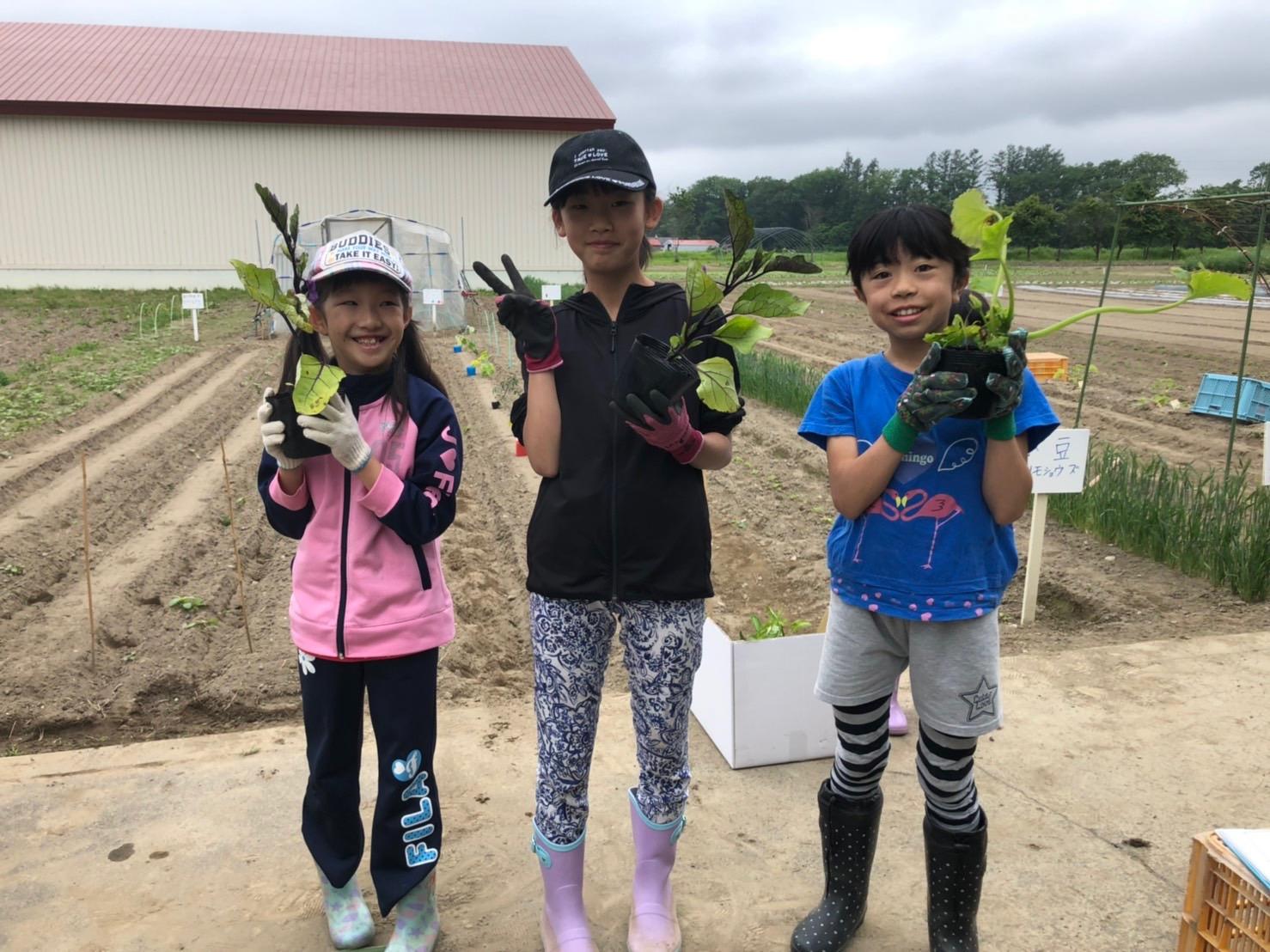 とかち畑キッズ〜苗植え・種まき