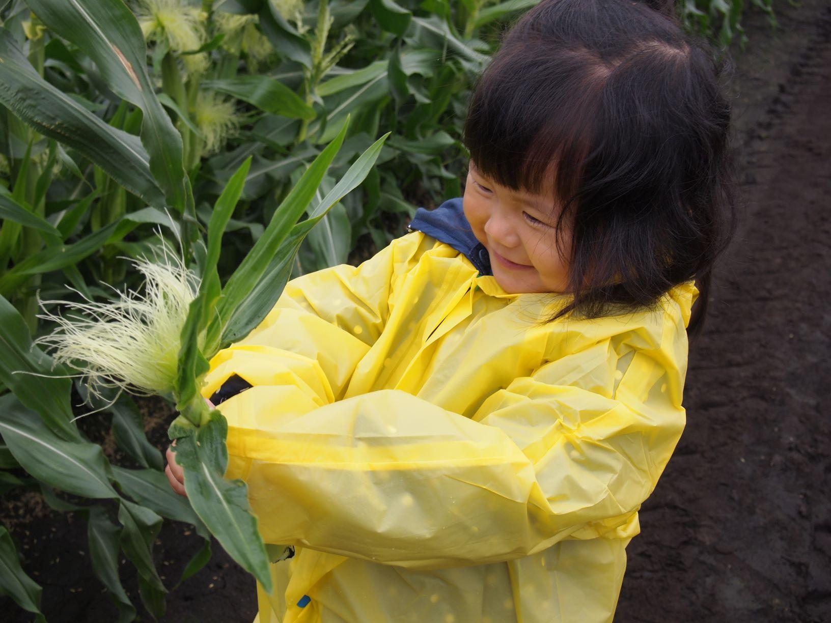 農場ピクニック_雨の日はどうなるの?