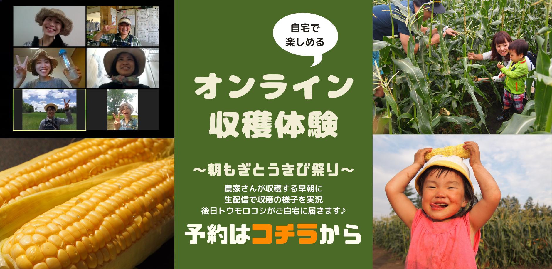 【ライブ配信】オンライン収穫体験🎶〜朝もぎとうきび祭り〜