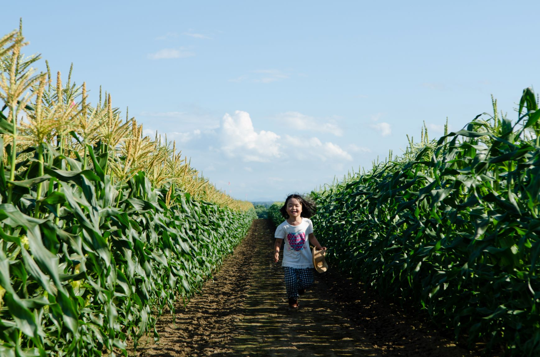 「泊まって遊ぼうおびひろ割」で農場ピクニックをお得に体験!